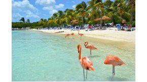 Aruba, mucho más que playas y shoppings