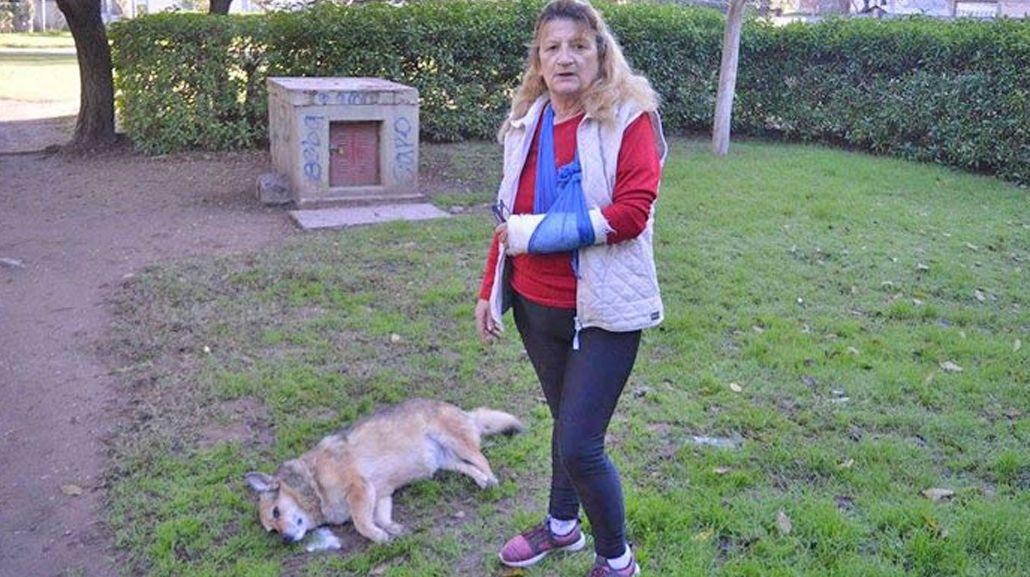Olga encontró a su perra muerta