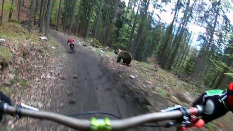 Dos ciclistas se pegaron un gran susto en Eslovaquia