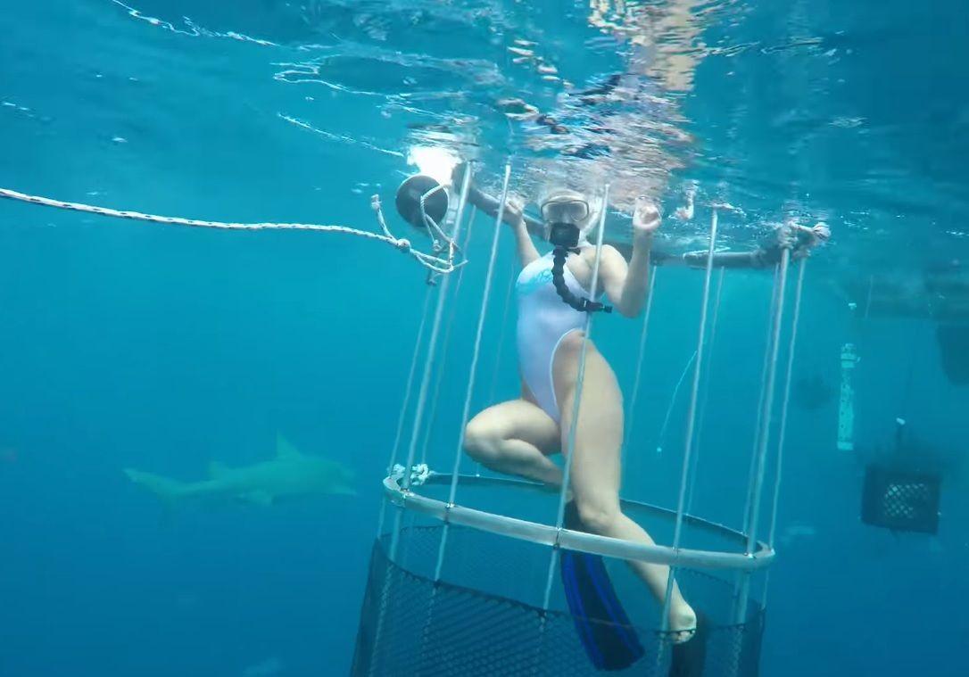 La actriz Molly Cavalli fue atacada por un tiburón