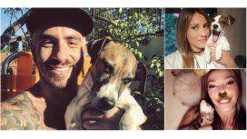 Los famosos y sus saludos por el Día del Animal