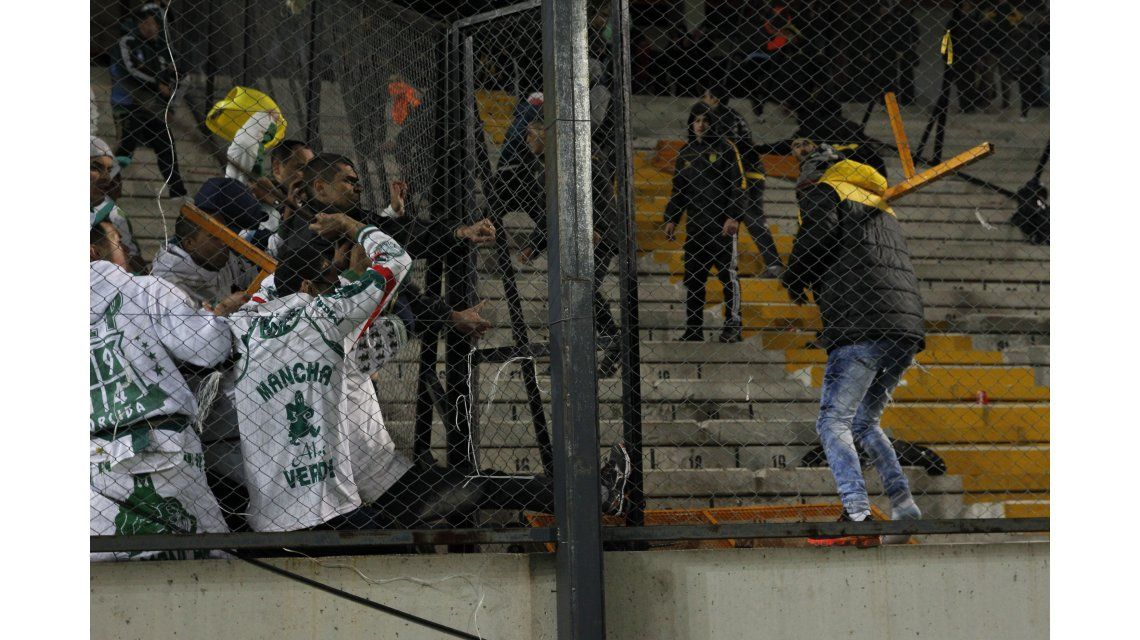 Hinchas de Palmeiras se defienden tras las rejas