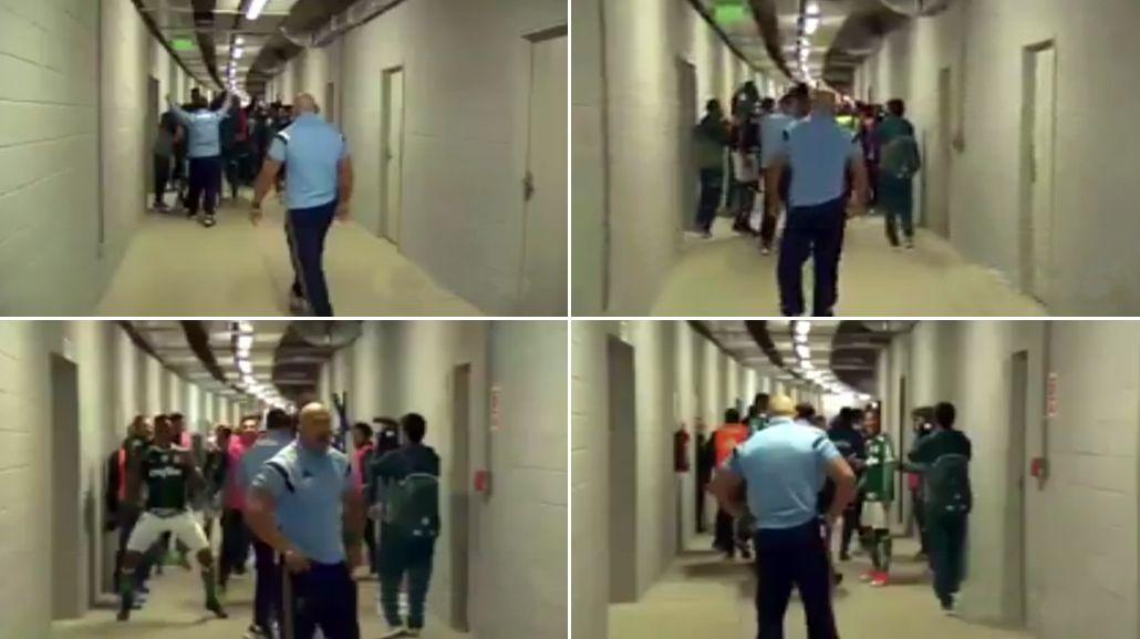La burda provocación de los jugadores de Palmeiras tras la batalla campal