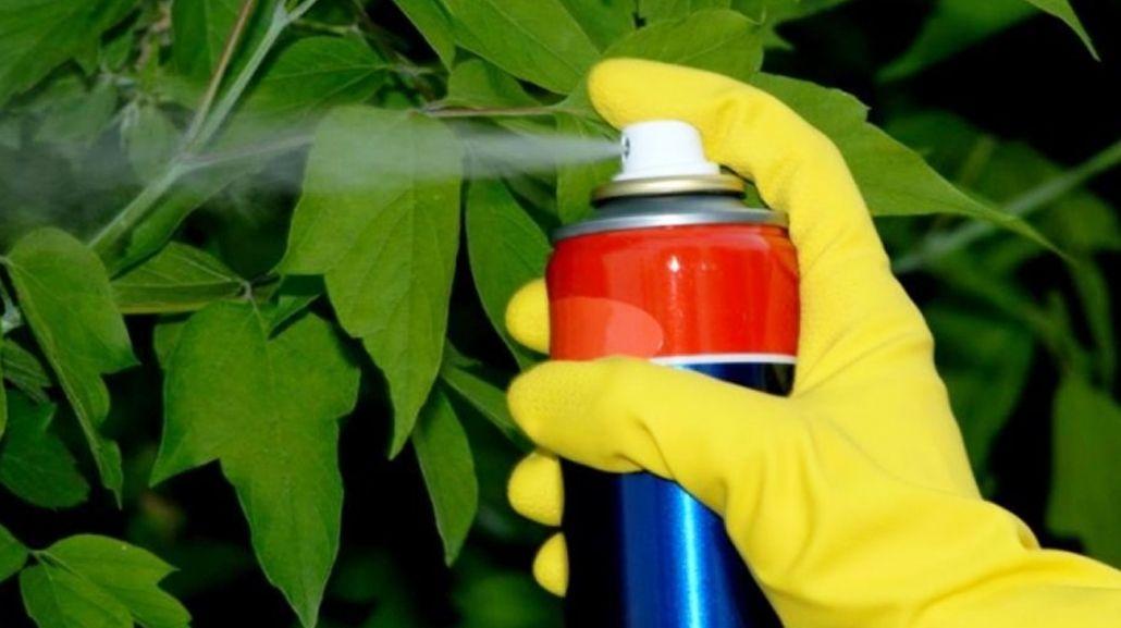 Prohibieron la venta de siete insecticidas