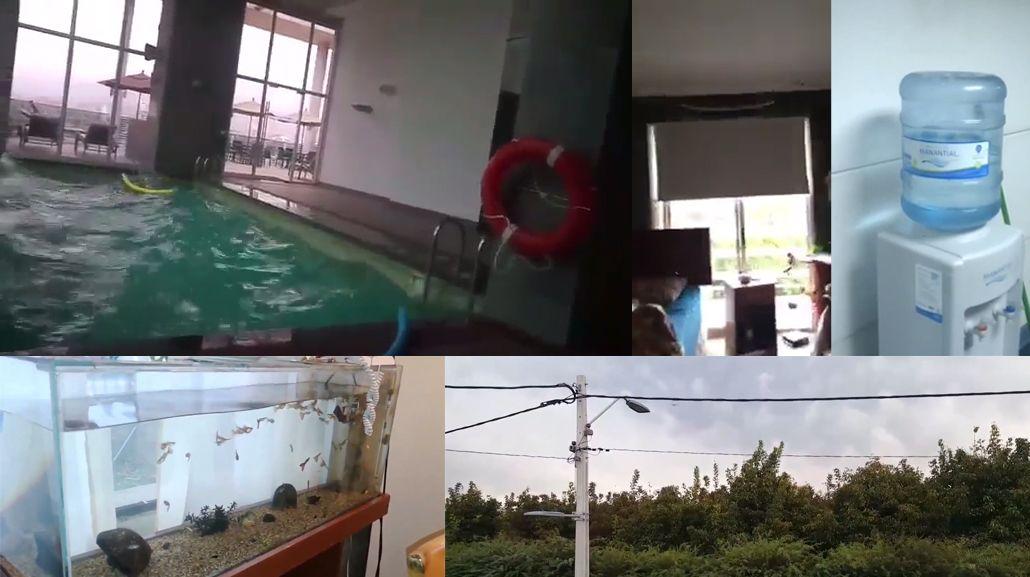 Distintos videos registraron cómo se vivió el sismo en Chile