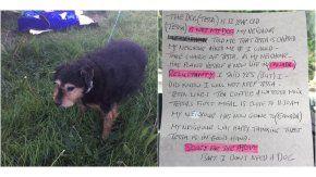 La abandonaron con un carta: No necesito un perro