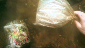 Un buzo halló un extraño objeto en un río de Columbus