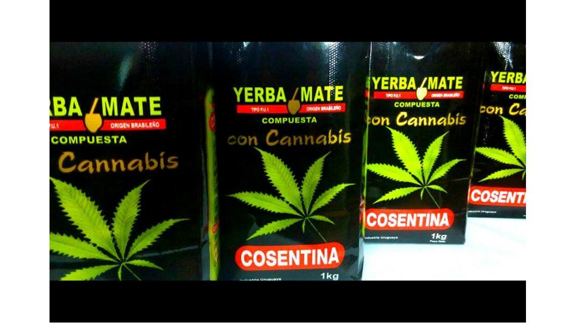Uruguay comenzará a vender yerba mate con cannabis