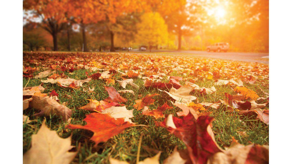 Comenzó el otoño un día antes