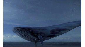 La ballena azul, el juego que llevó a adolescentes al suicidio