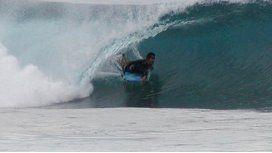 El surfista fue atacado en la arteria femoral y murió desangrado