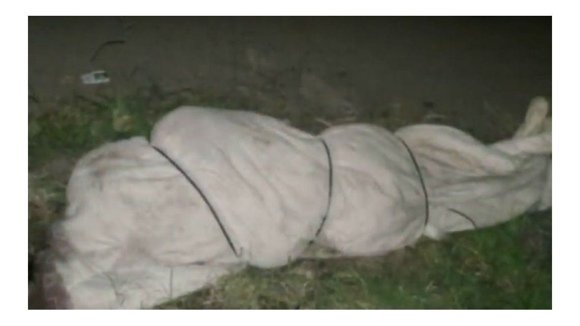 Este es el cuerpo hallado en José C. Paz
