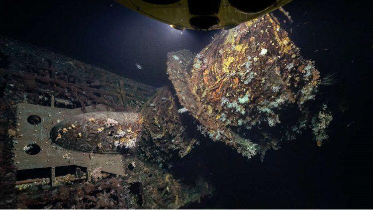 Un submarino nazi se convirtió en un coral artificial - Crédito:http://www.iflscience.com