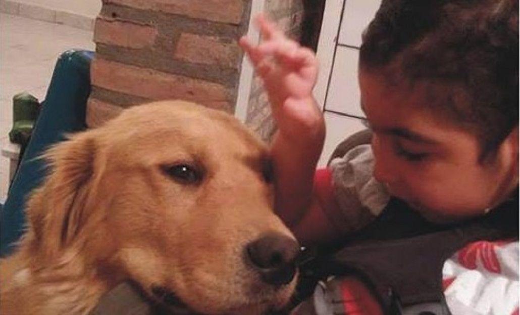Se perdió el lazxarillo de un nene con parálisis - Fuente: FacebookCarlos M Najar Ruiz