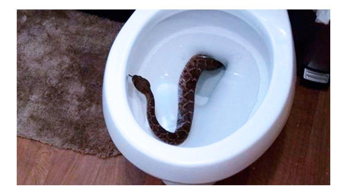 El nene se llevó tremenda sorpresa en el baño