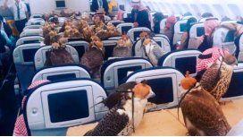 Excéntrico: un príncipe árabe viajó en un avión con sus 80 halcones