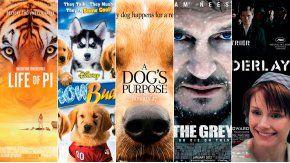 Películas de Hollywood acusadas por maltrato animal