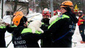 Los bomberos rescatando a los cachorros