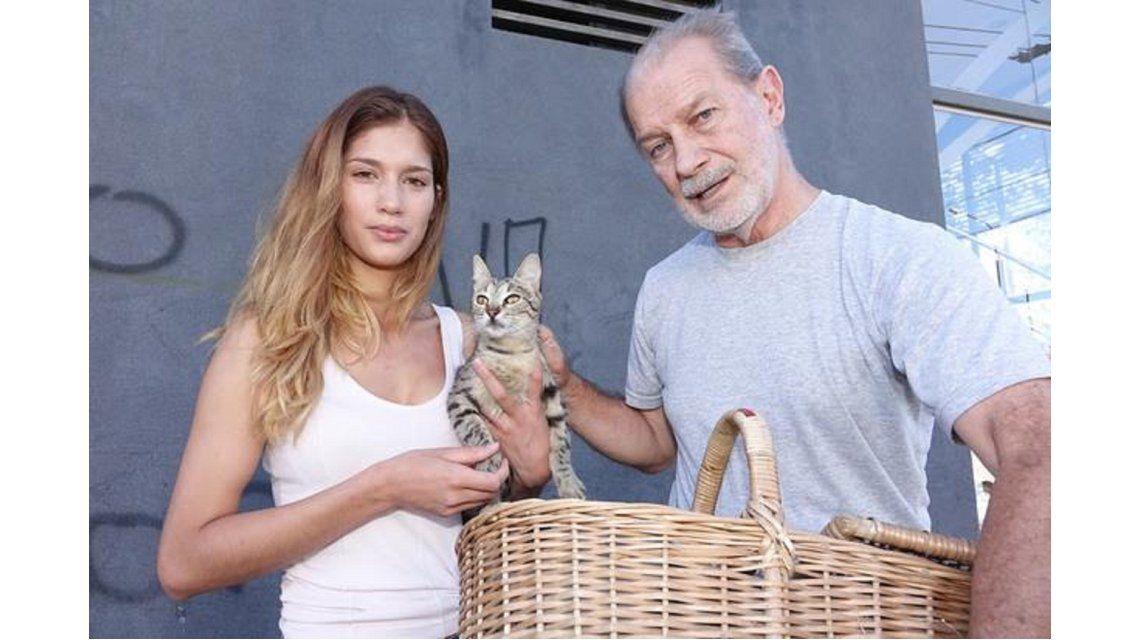 La gatita que quisieron abandonar encontró hogar