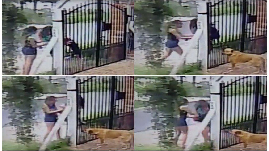Dos chicas se robaron un perro La Plata