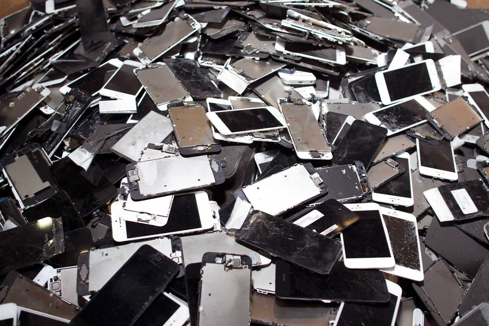 ¿Cómo cuidar y reciclar tu celular?