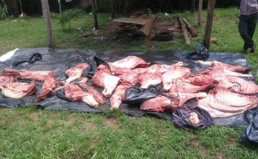 Denuncia contra la comisaría de Pueblo Libertador por robo de ganado