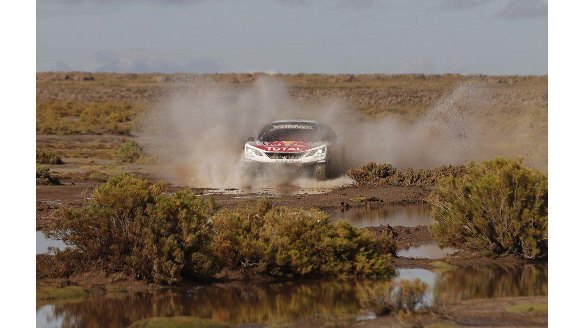 Loeb quedó primero tras las primeras 8 etapas