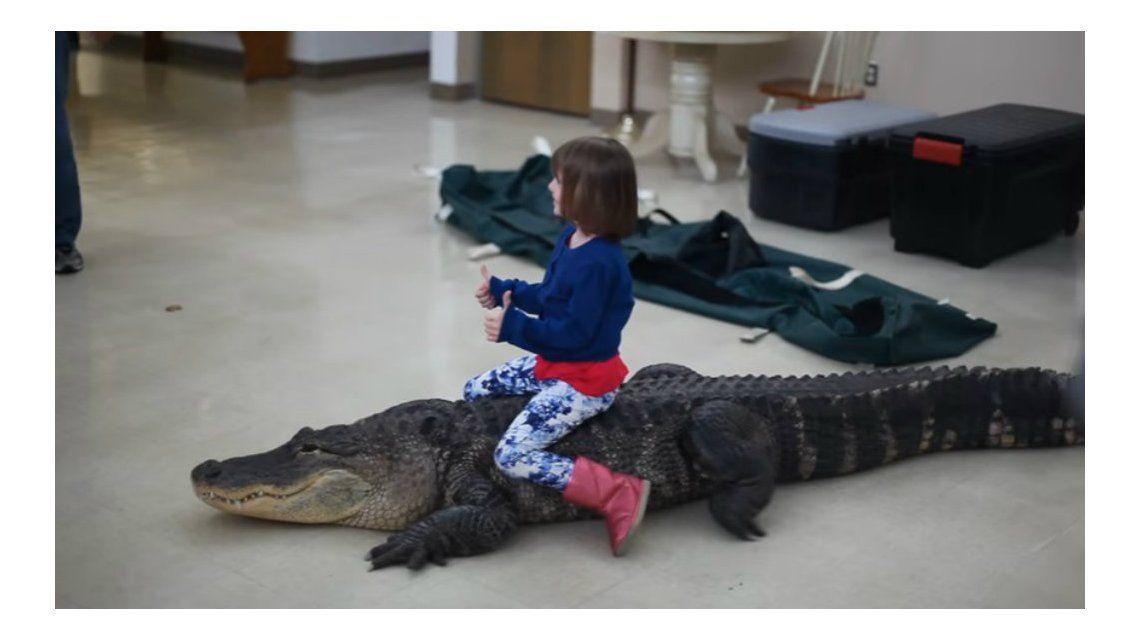 Una nena anduvo en lagarto