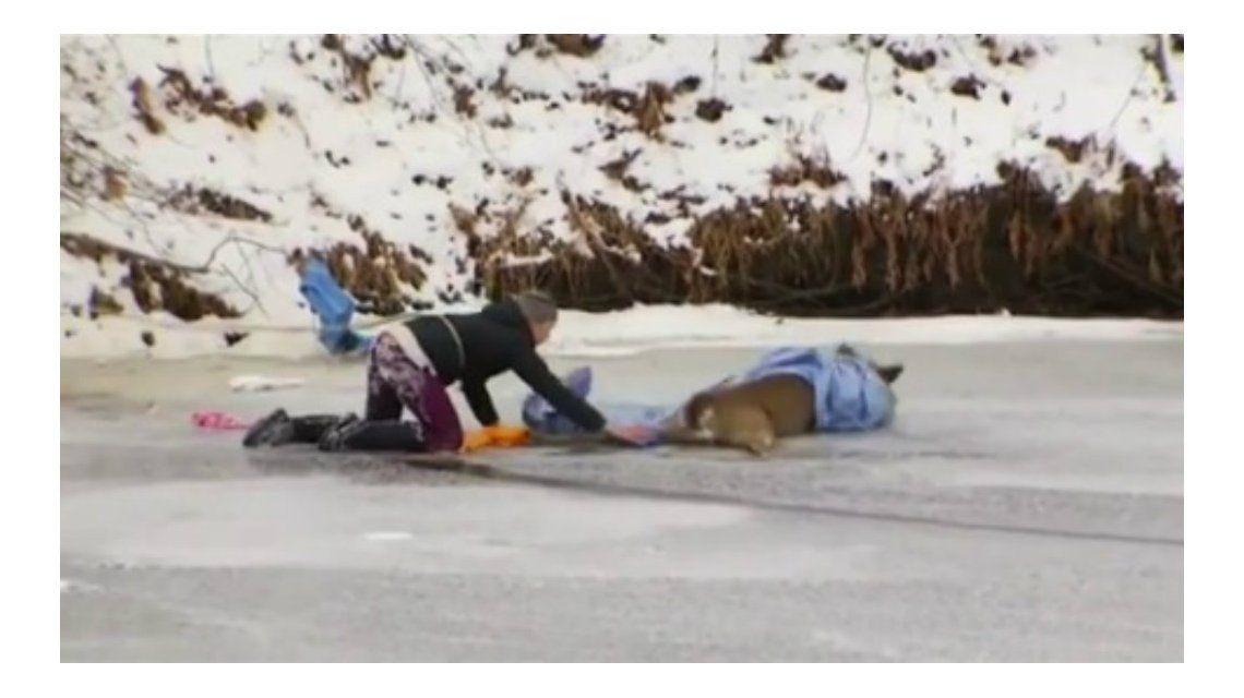 Tuvieron que rescatar al ciervo