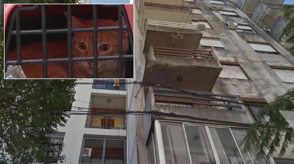 Ocurrió en un edificio de Montevideo al 2000