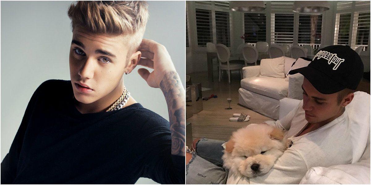 Justin Bieber abandonó a su último perro