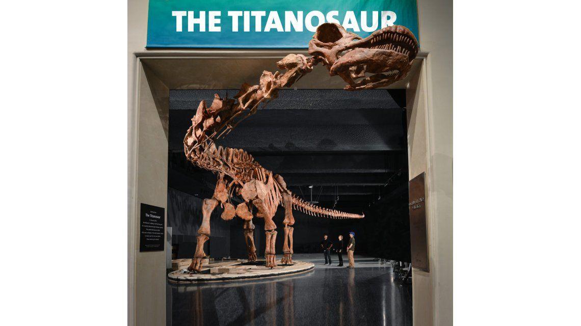 El Titanosauri