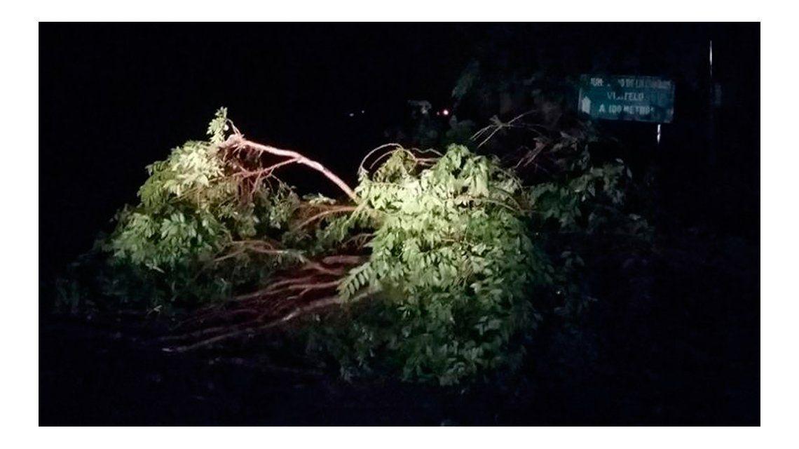 Muchas casas quedaron sin luz tra el temporal