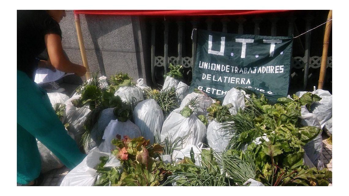 Productores regalan 15 mil kilos de verduras