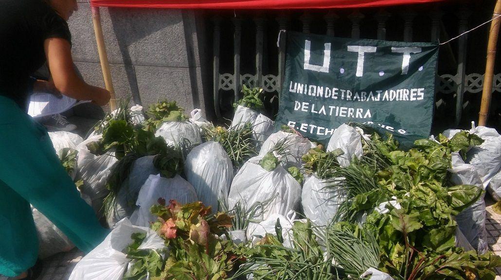 Productores regalan 15 mil kilos de verduras<br>
