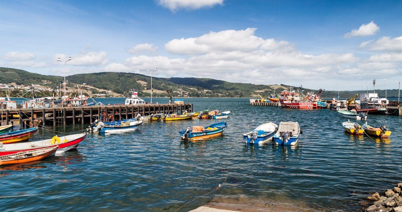 Sismo de 7,6 en Chile: cuatro mil evacuados a zonas seguras