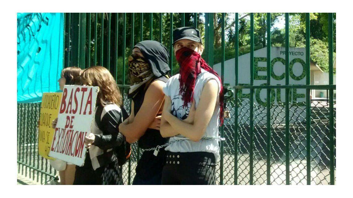Activistas se encadenaron en la puerta del Zoológico