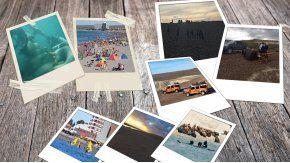 A 1300 kilómetros de Capital, Madryn ofrece un sinfín de actividades