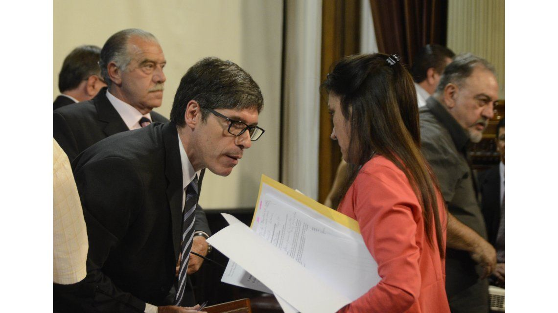 Abal Medina en el Senado