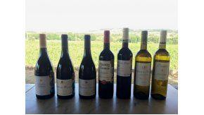 Portugal apuesta al vino