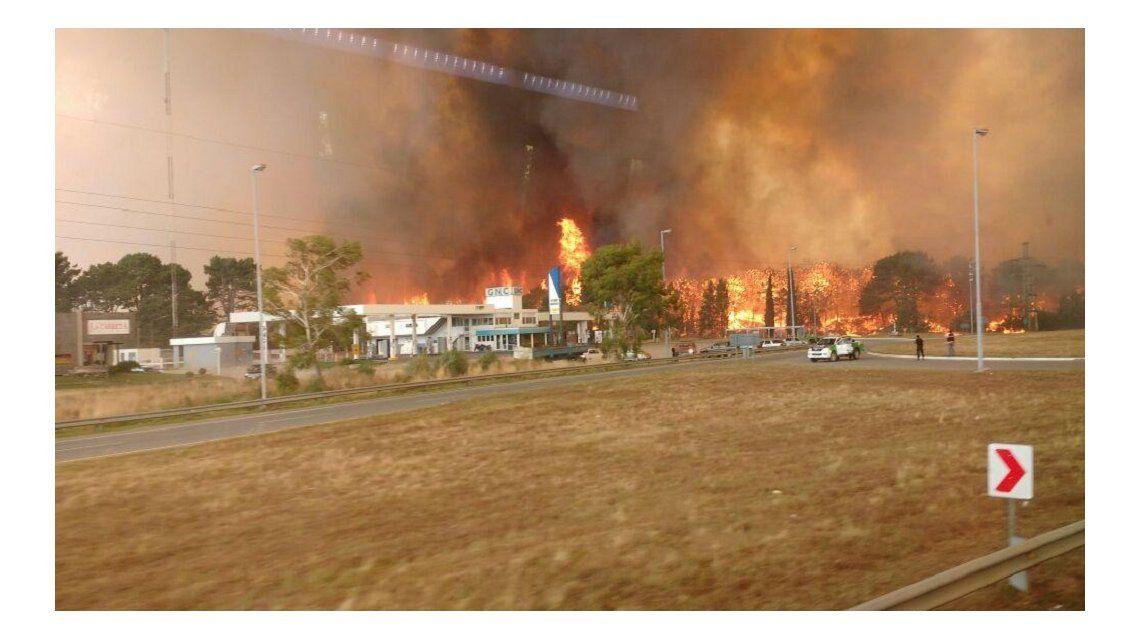 Voraz incendio en los bosques de Cariló y Valeria del Mar