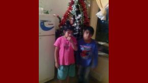 Un nene pidió un árbol de Navidad por Facebook.