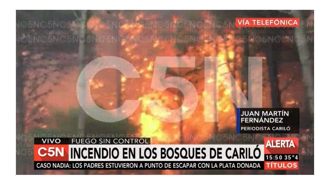 Un incendio consume los bosques de Cariló y Valeria del Mar