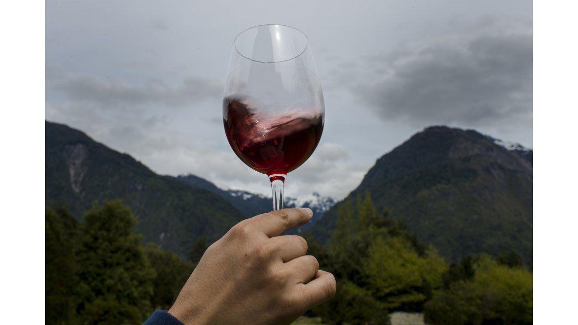 Los mejores vinos
