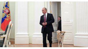 El perro de Vladimir Putin
