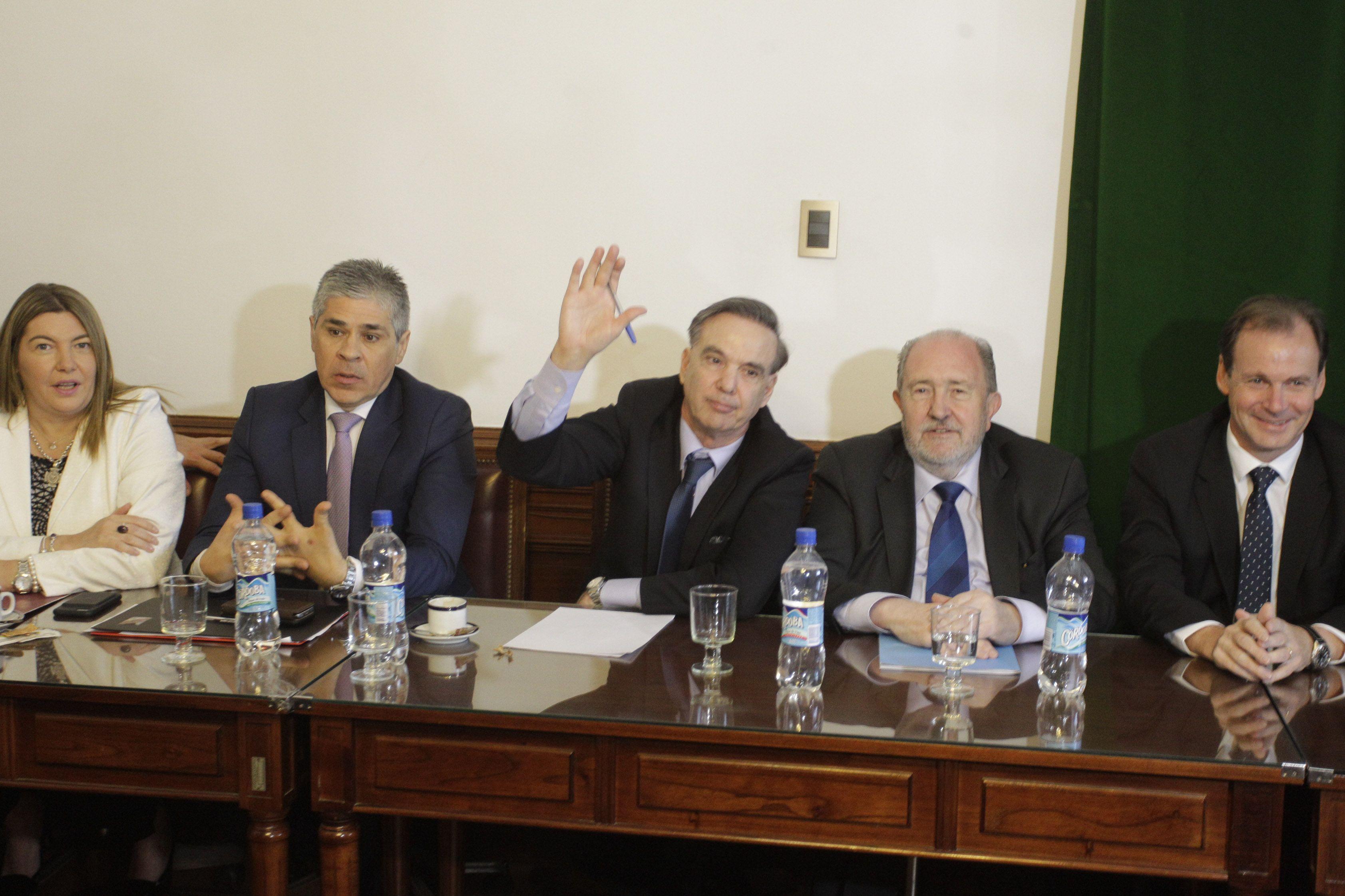 Senadores y Miguel Ángel Pichetto