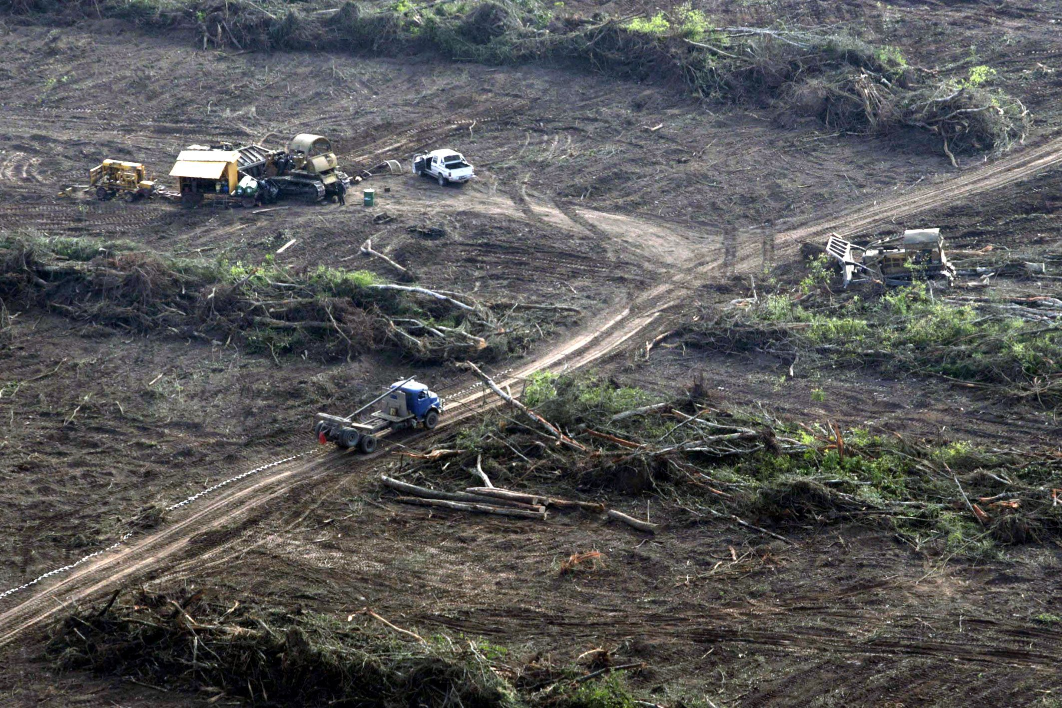 Vista aérea del desmonte de la reserva de biósfera de las yungas donde se observan topadoras realizando el trabajo.