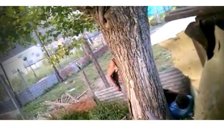 Los vecinos denuncian que el nene pasa horas atado a un árbol