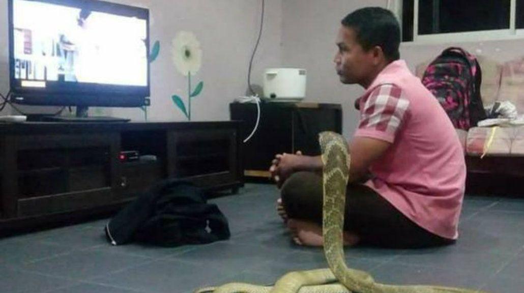 Su novia murió pero según él volvió en forma de serpiente