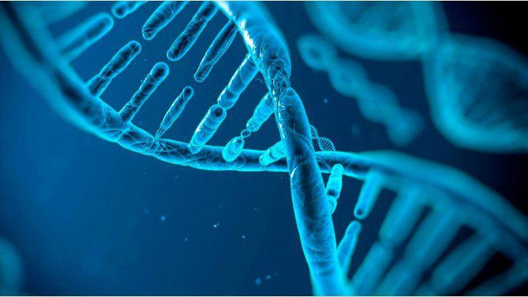 Los genes malos no siempre son malas noticias